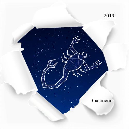 гороскоп скорпион на 2019 год